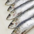 Heads raw sardines — Stock Photo