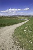 дорога в горах — Стоковое фото