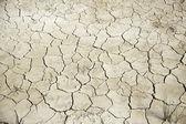 Dry land — Stock Photo