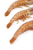 Fresh shrimp tails — Stock Photo