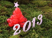 2013 on grass — Stock Photo