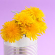 Royalty-Free Stock Photo: Food can and flowers