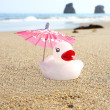 Duck and pink parasol — Stock Photo