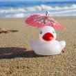 White duck on the beach with parasol — Stock Photo