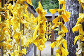 Yellow offering in japanese temple — Stock Photo