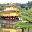 Golden pavilion — Stock Photo #36372007