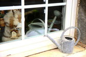 Watering can in the windowsill — Stock Photo