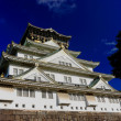 Stock Photo: Osakcastle-Japan
