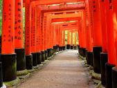 Kyoto-Toris — Stock Photo