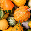 Foto Stock: Pumpkins