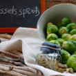 Little sprouts — Stock Photo #40949665