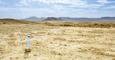 Bottle of water in Desert of the Bardenas Reales in Navarre — Stock Photo