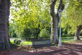 Panchina in un parco — Foto Stock