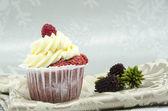 蛋糕 — 图库照片