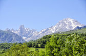 Naranjo de Bulnes — Stock Photo