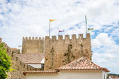 Castle of Obidos — Стоковое фото