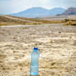 Stock Photo: Bottle of water in desert