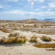 Stock Photo: Desert of Bardenas Reales in Navarre