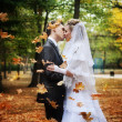 Newlyweds kissing in the autumn park — Stock Photo