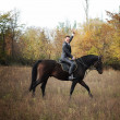 Stock Photo: Groom astride on dark horse