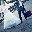 Newly-married couple. The groom with a suitcase — Stock Photo