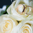 Rings on rose — Stock Photo