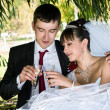 Bride and groom drinking champagne — Stok fotoğraf
