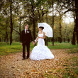 Beautiful bride and groom walking in a park — ストック写真