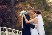 Happy just married couple standing on the small bridge — Stock Photo