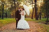 жених и невеста поцелуи в парке — Стоковое фото
