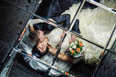 Wedding of a young couple — Stock Photo