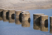 Playa de darss, alemania — Foto de Stock