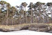Plaża darss - weststrand — Zdjęcie stockowe