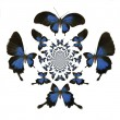 Royalty-Free Stock Photo: Kaleidoscopic Butterflies Illustration