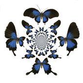 Kaleidoscopic Butterflies Illustration — Stock Photo