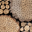 Detail of an Insect Hotel - Stock Photo