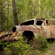 Постер, плакат: Car Dump in Kirkoe Mosse