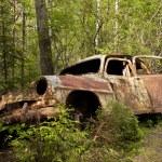 ������, ������: Car Dump in Kirkoe Mosse