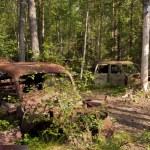 Car Dump in Kirkoe Mosse — Stock Photo #29735477