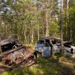 Car Dump in Kirkoe Mosse — Stock Photo #29735791