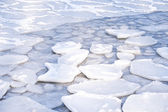 Ice Floes — Stock Photo