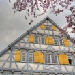 House in Kirchheim Teck — Foto de Stock