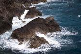 Cliff on Madeira — Foto Stock