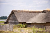 Viking Village — Stock Photo