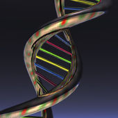 DNA Illustration — Stock Photo