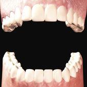 Zęby — Zdjęcie stockowe