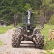 Stock Photo: Forestry Machine