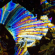 Stock Photo: Soot particles and microcrystals in polarized light