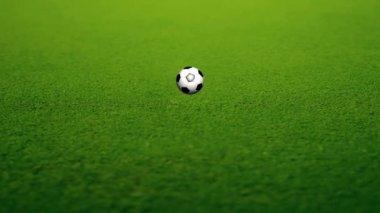 Animated Soccer Ball — Stock Video