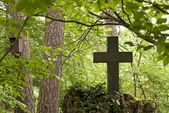Cemetery in a Forest — Stock Photo